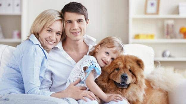 Wills & Trusts dog-young-family Direct Wills Colliers Wood